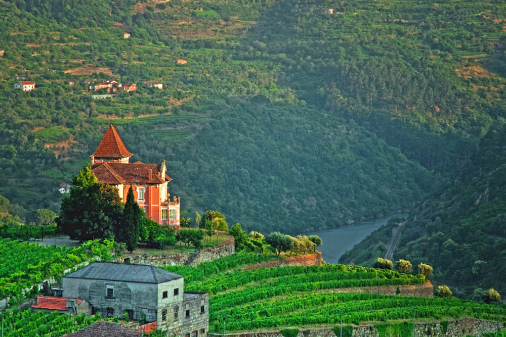 house-rolling-hills-douro-valley-portugal-cr-istockphoto-joel-zack
